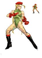 HD Cammy SF2 by Marsonite