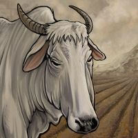 Ox Tile by ursulav