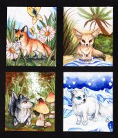 Four seasons by Serena-Jevel