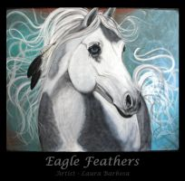 Eagle Feathers by barbosaart