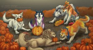 At the Pumpkin Patch by Junryou-na-Kokoro