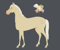 The Gelding reference new colors by Citron--Vert