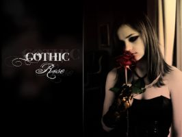 Gothic Rose by maggot09