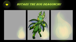 Hotaru The Bug Dragonchu Ref by Dragonikku