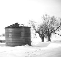 A bin in the snow by rosesnsuch