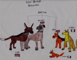 War Hounds characters I: Allied Forces by srebak
