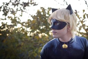 Chat Noir Cosplay, Miraculous Ladybug by hakucosplay