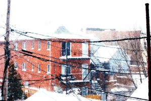 Beauty of Snow Storm by Crustech