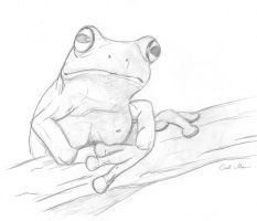 Froggy - practice by AdriennEcsedi