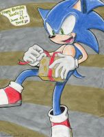 Happy Birthday Sonic by Sparky2hot4ya