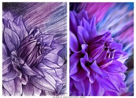 flower - practice by Kler-z