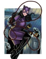 Zsu Zsu's Catwoman by BigChrisGallery
