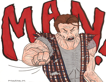 Lynkara is a MAN! *punch* by Probable-Futures