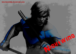 Nightwing ID by WolfRaver13