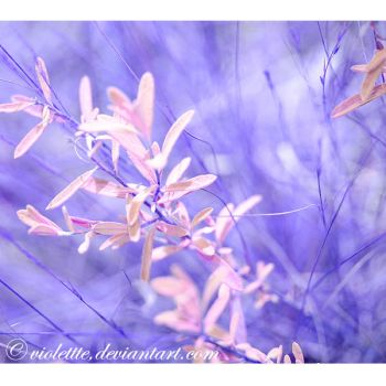 fade to blue by Violettte