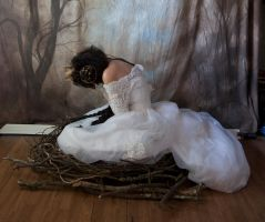 bird 4 by magikstock