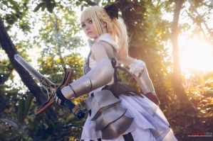 Saber Lily by riskbreaker