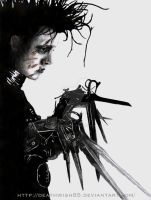 Edward Scissorhands by deathwish85