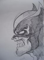 wolverine head shot by AsatorArise