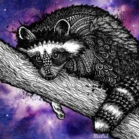 Galaxy Racoon by Man0uk
