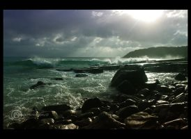 Noosa National Park by tracieteephotography
