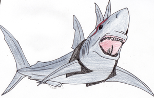 Tres the Shark by EmporerXur