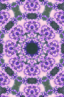The Hearts of Lavender Kaleidoscope by CarlosAE
