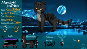 Blacktiger (updated) by FlyingWithFire