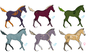 +Foal Deity Adoptables: SOLD+