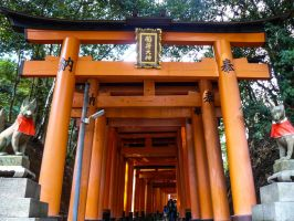 Torii 12 by thecomingwinter