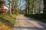 Wooded path by PythonIt
