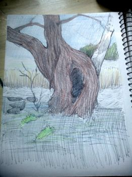 practicing to draw nature 2 by H-U-L-I