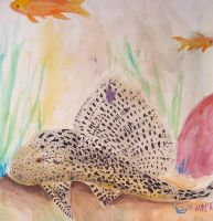 watercolor pleco by yomoe13