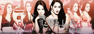The Bella Twins by TheAwesomeJeo