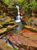Ricketts Glen State Park 97 by Dracoart-Stock