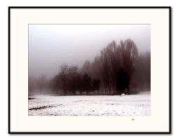 Winter Landscape by DanStefan