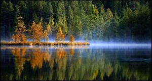 Morning on a swamp lake by eswendel
