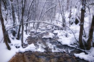 Rivers Flow by LG77