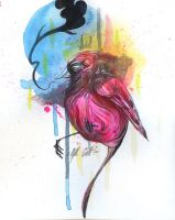 Pink Splash Cardinal by manfishinc
