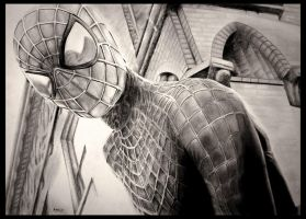 Amazing Spider-man by foxartsbrazil