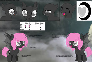 Fallen Skies' official reference sheet by Starlollipop