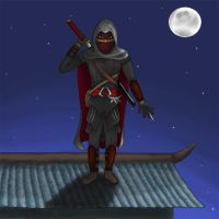 Ninja Assassin by Puzzled-Cellist