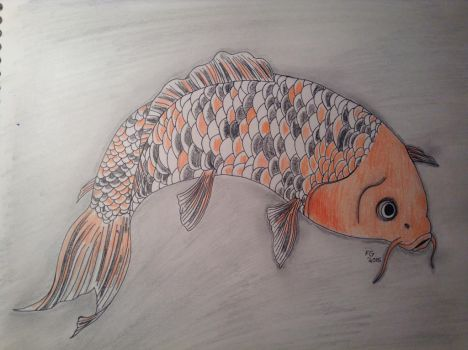 Koi Fish Drawing by NINJAWERETIGER