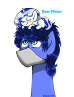 Best Pillow. by skyrore1999
