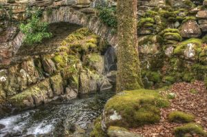Mossy Bridge Over Stream HDR by twilliamsphotography