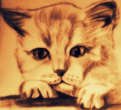 cat drawing with model by Arioch85