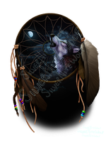 ~The Dream Catcher~ by SilverNiteWolf
