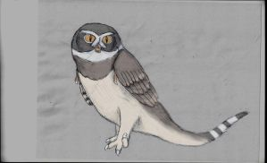 Dinosaur concepts: No, its not a Spectacled owl by Austroraptor