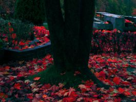 Red Autumn by ShadowSoul135