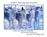Endlessthese dogdaysofwinter by sub18lime